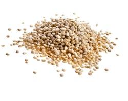 bigstock-quinoa-seed-grain-close-up-mac-53485546 Resized