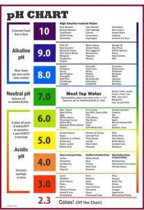 alkaline zuurbase dieet