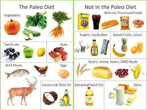carnivoor dieet recepten